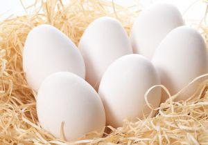 egg1507.jpg