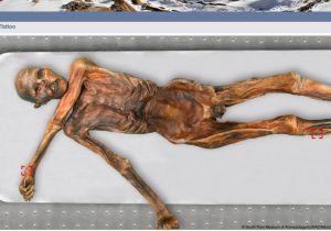 5300年前のミイラを最新の「DNA鑑定」で死因や職業を解明!の画像1