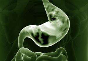 「ピロリ菌除菌で→大腸がん&食道がんリスク増大」は本当なのか?の画像1