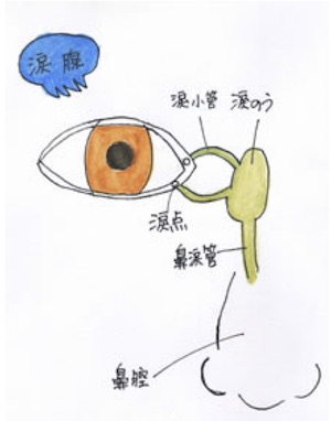 乾燥するのに涙目になる、冬場の不思議な「ドライアイ」と「涙目」の関係! その原因、治療法は?の画像2