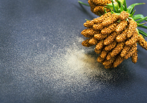 花粉飛散の季節到来前にできることは?つらい花粉症と闘う免疫力を手に入れる!の画像1