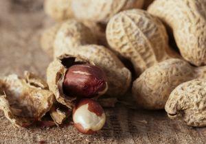 1歳前にピーナッツを食べ始めてアレルギーを回避? 乳児の発症率が80%低減の画像1