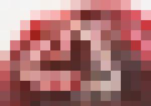 placenta10172.jpg
